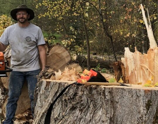 Arborist Consultations-Boynton Beach Tree Trimming and Tree Removal Services-We Offer Tree Trimming Services, Tree Removal, Tree Pruning, Tree Cutting, Residential and Commercial Tree Trimming Services, Storm Damage, Emergency Tree Removal, Land Clearing, Tree Companies, Tree Care Service, Stump Grinding, and we're the Best Tree Trimming Company Near You Guaranteed!