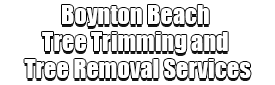 Boynton Beach Tree Trimming and Tree Removal Services