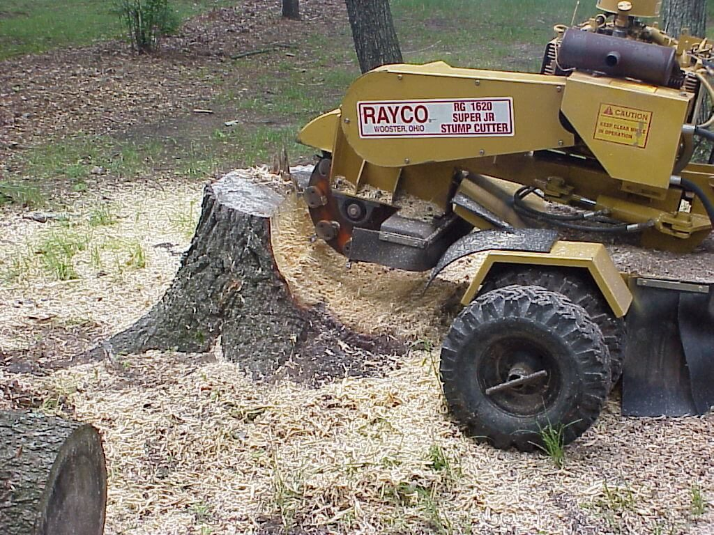 Stump Grinding-Boynton Beach Tree Trimming and Tree Removal Services-We Offer Tree Trimming Services, Tree Removal, Tree Pruning, Tree Cutting, Residential and Commercial Tree Trimming Services, Storm Damage, Emergency Tree Removal, Land Clearing, Tree Companies, Tree Care Service, Stump Grinding, and we're the Best Tree Trimming Company Near You Guaranteed!